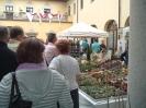 Arte e Natura 2012 9
